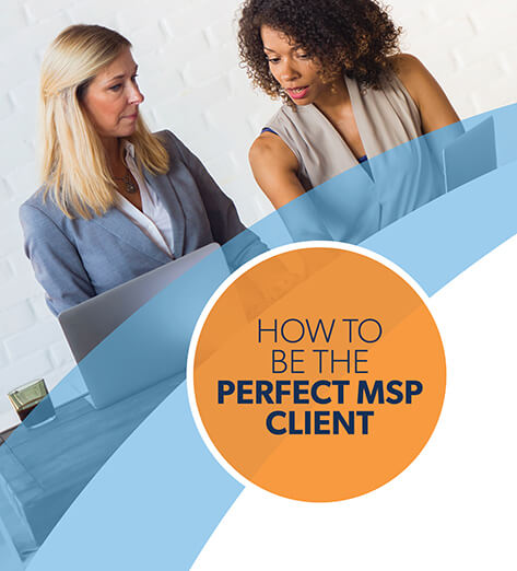Two Professional Women Collaborating - Perfect MSP Client